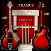 FRAMUS Nr.: 2120020